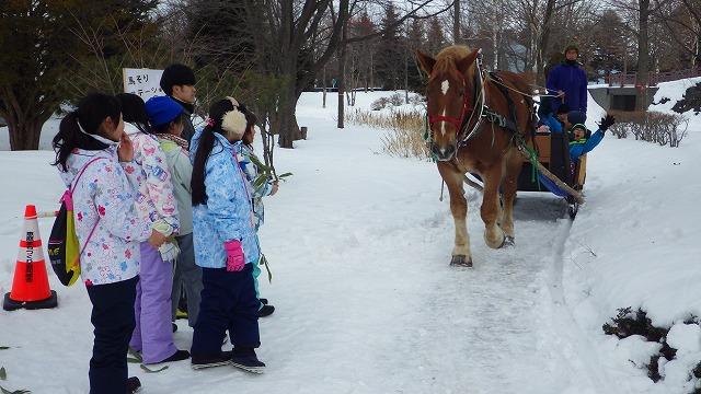 馬そりは初めて乗る子供も多く、大盛況だった