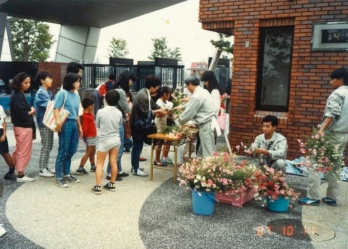 1987年(昭和62年)に実施したコスモス無料配布には長蛇の列ができた