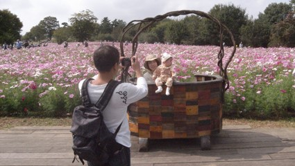 花畑を背景に撮った写真はSNSに投稿されるようになり、フォトスポットを設置するなど時代と共に花畑も変化してきた